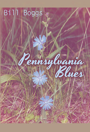 Pennsylvania Blues book cover