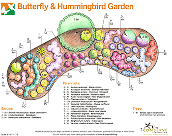 Exceptionnel Gardening Project Blooms Into Reality. Share. Hummingbird