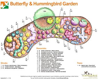 Hummingbird Garden Designs Inspiration