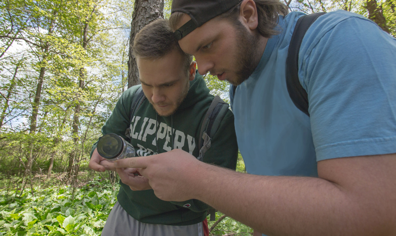Slippery Rock University biology students on insect hunt