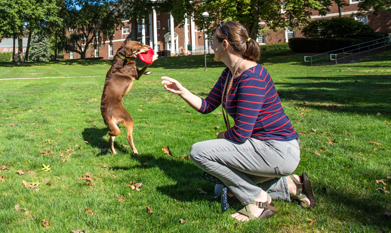 dog and owner playing frisbee