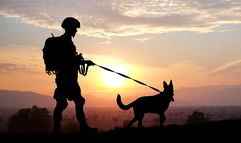 soldier and service dog