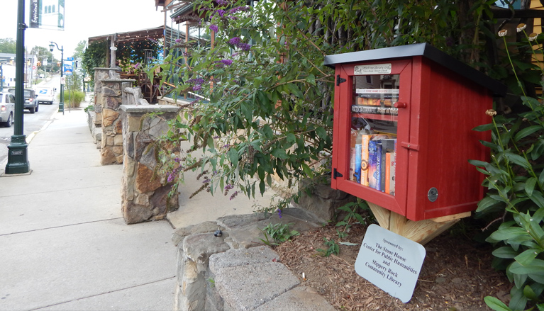 Little free library on Main Street near North Country Brewing Co.