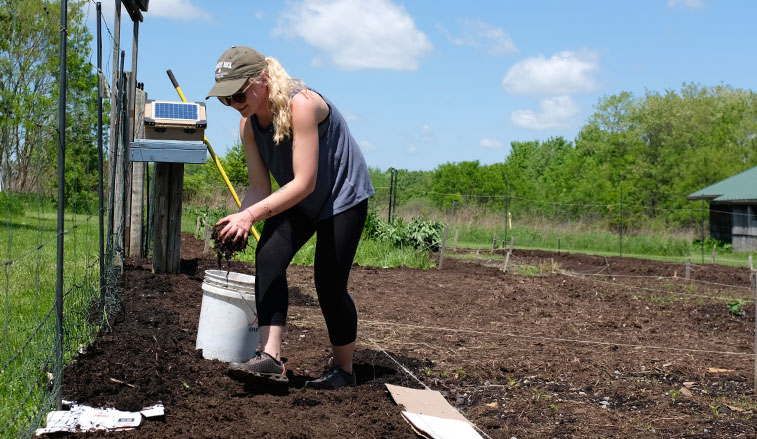Students spread compost on the garden
