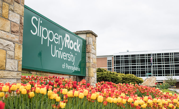 Flowers in bloom in front of the university sign