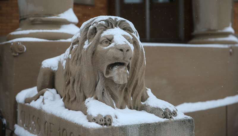 Lion Statue covered with snow