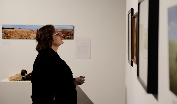 Lady looking at art