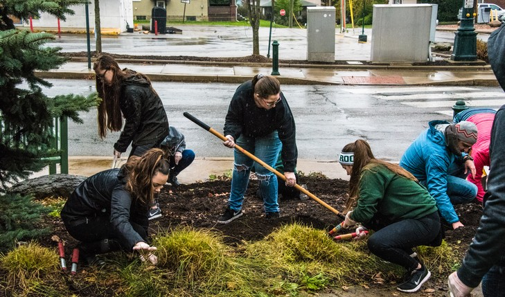 students clearing landscape