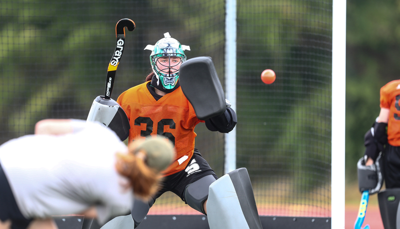 Woman playing field hockey