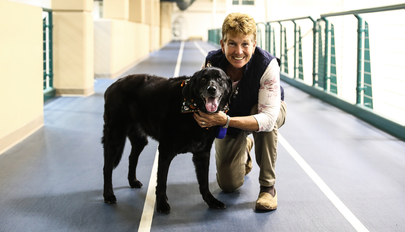 dog on the track with his owner