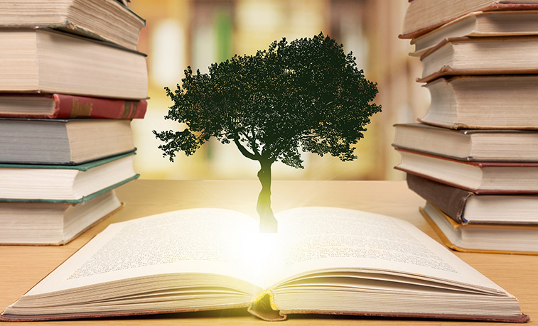tree growing out of a book