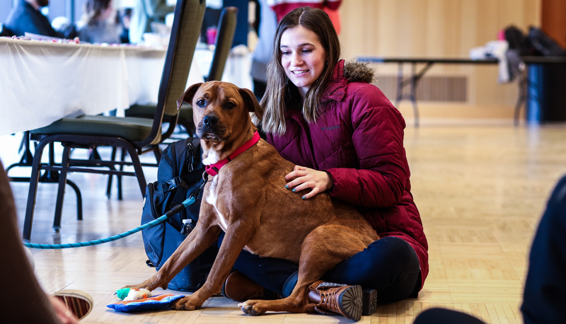 Student with a therapy dog