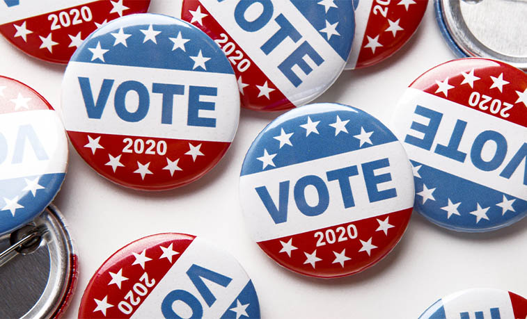 Voting pins
